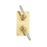 The Chessleton Shower Plate Thermo & 2 Way