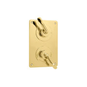 The Leawood Shower Plate Thermo & 2 Way